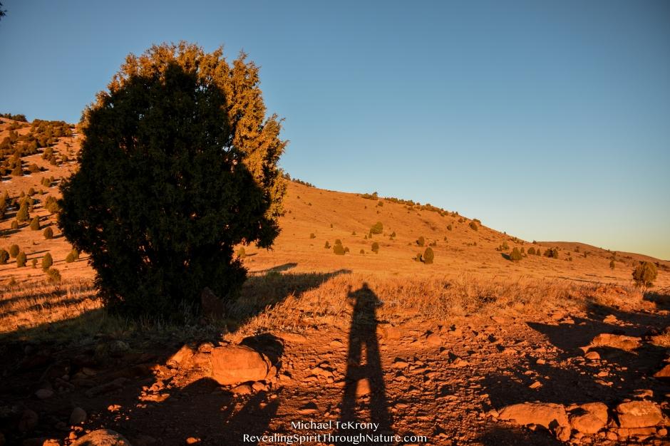 Red Rocks Trail 2018-11-21-5