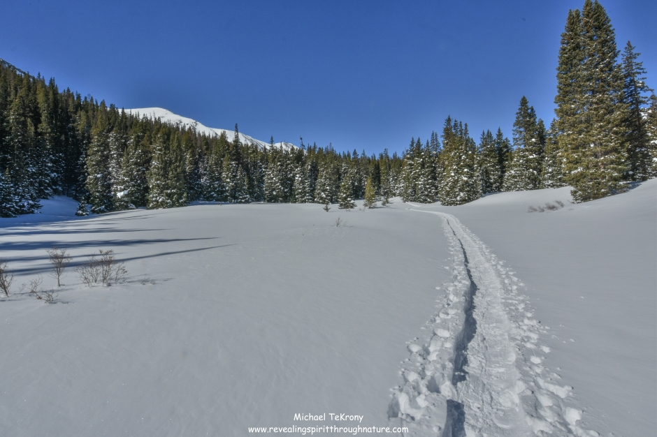 Silver Dollar Lake Trail 2019-3-15-14